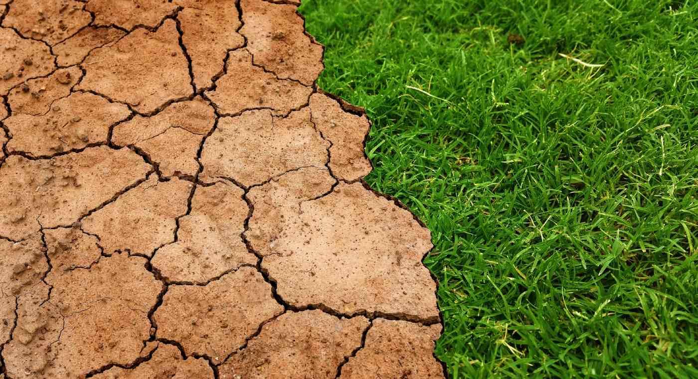 Neutralità climatica Livorno