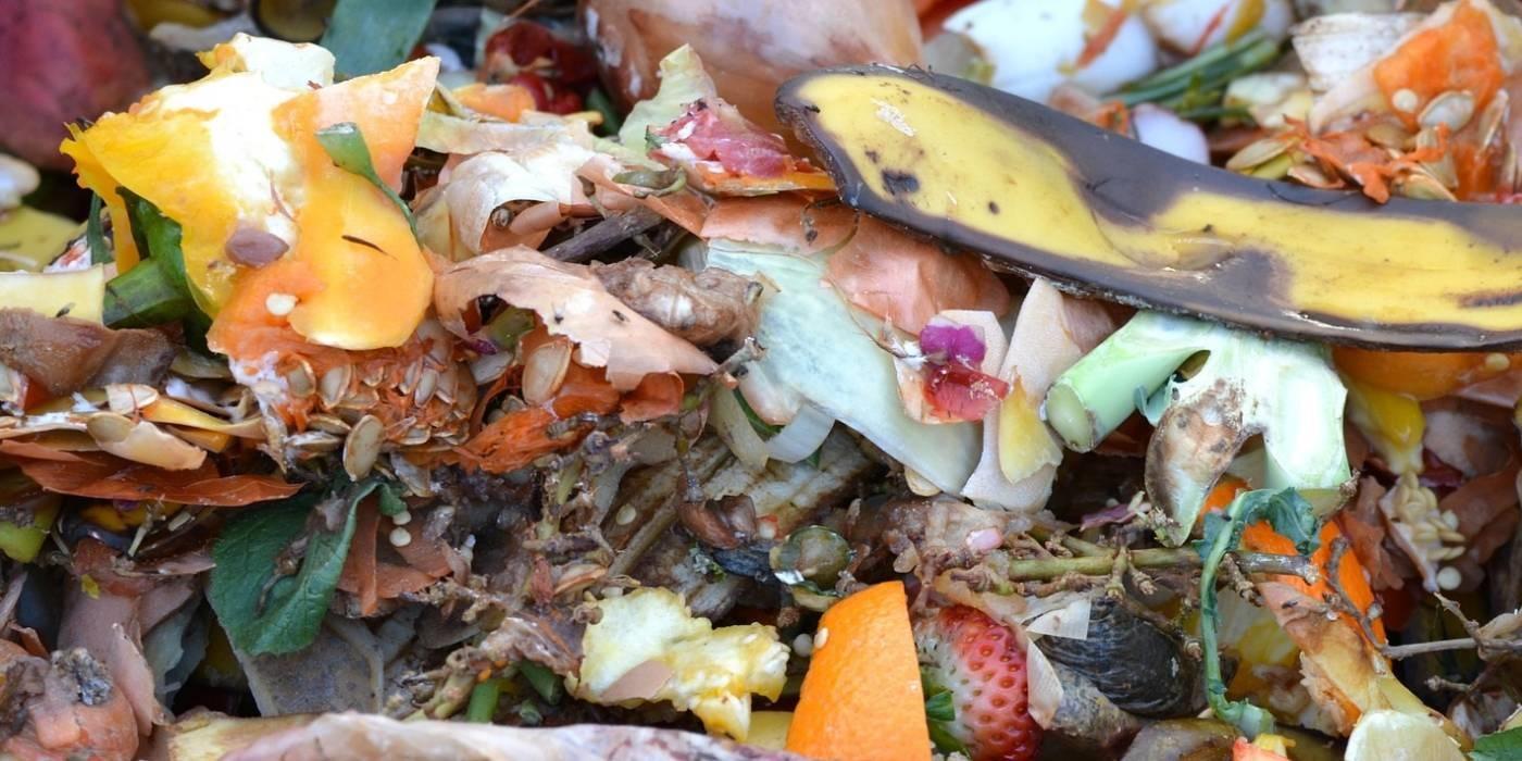 compostaggio condominiale